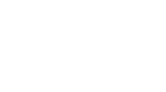 Logo of BGOcloud - footer